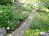 Örtagården med 23 kryddväxter