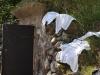 Handdukar på tork