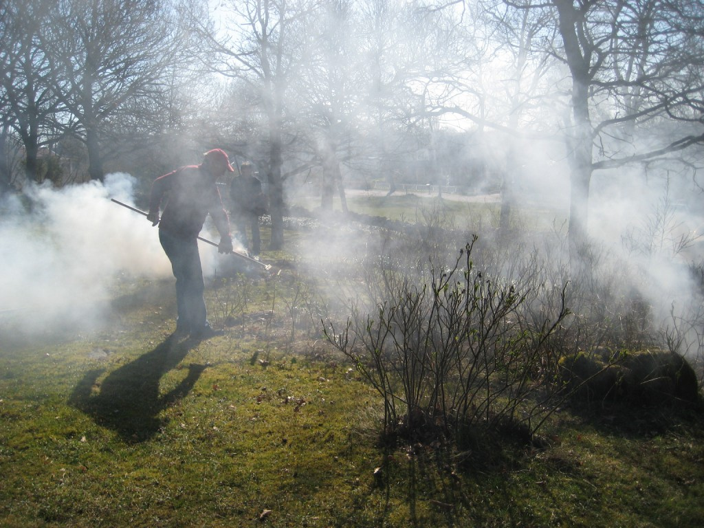 Räfsning i rök